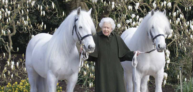 EVENTING: DRIE ZEGES IN ITALIË